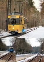 woltersdorf/174289/im-wald-beim-s-bahnhof Im Wald beim S-Bahnhof