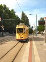 frankfurt-oder-tw-60/16322/tw-60-verlaesst-die-hst-hauptbahnhof Tw 60 verläßt die Hst. Hauptbahnhof in Richtung Europa-Universität, Mai 2009