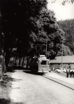 Tw 9 ex Lockwitztalbahn/116039/hist-tw-9-im-kirnitzschtal Hist. Tw 9 im Kirnitzschtal